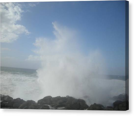 Ocean Boon Canvas Print