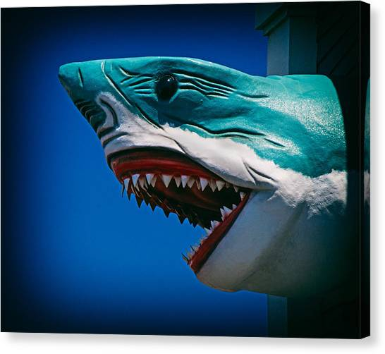 Ocean City Shark Attack Canvas Print by Bill Swartwout Fine Art Photography