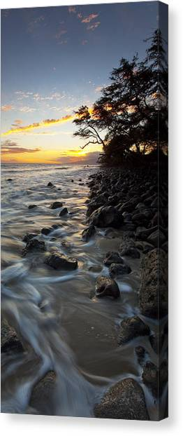 Ocean Flow Canvas Print by James Roemmling