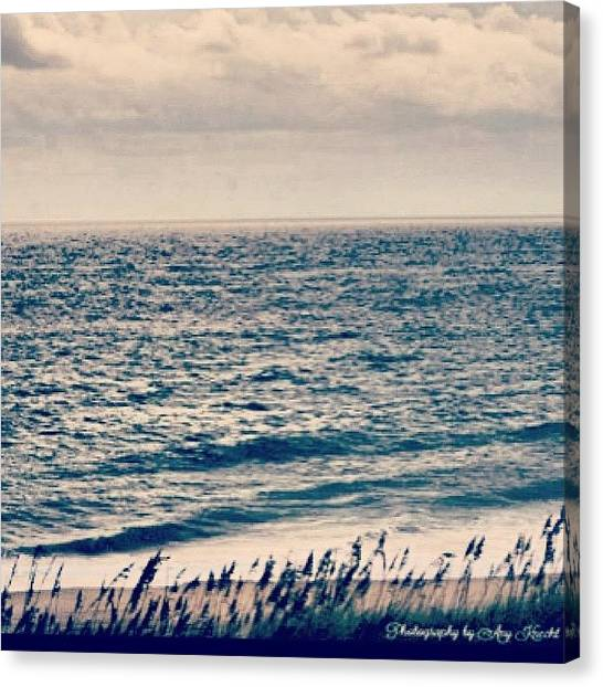 Seagrass Canvas Print - Ocean In The Morning  #nahsheadnc by Amy Knecht