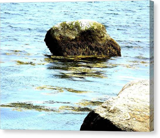 Ocean Rock Canvas Print by Dancingfire Brenda Morrell
