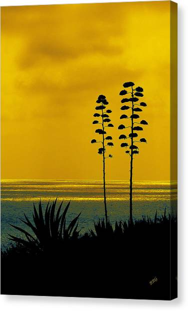 Ocean Sunset With Agave Silhouette Canvas Print