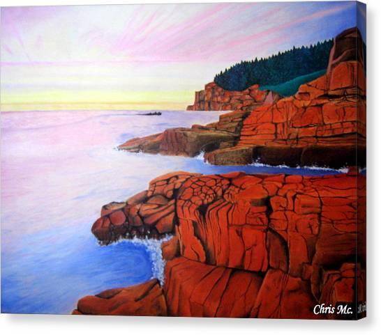 Ocean View Canvas Print by Chris Mc