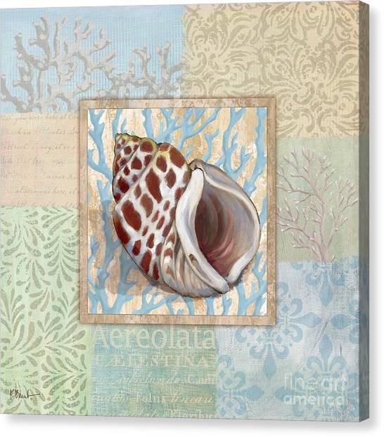 Conch Canvas Print - Oceanic Shell Collage I by Paul Brent