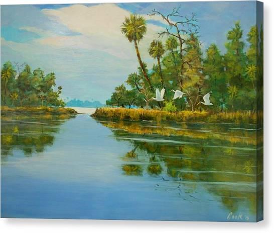 Ochlocknee River Canvas Print by Michael Cook