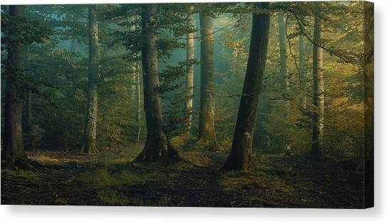 Panorama Canvas Print - October Colors by Norbert Maier