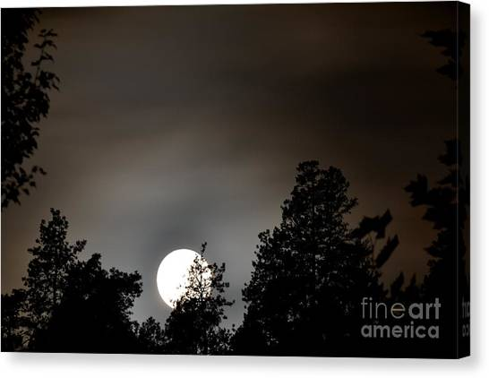October Full Moon I Canvas Print by Phil Dionne