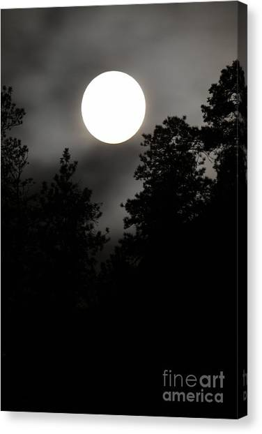 October Full Moon IIi Canvas Print by Phil Dionne