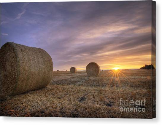 Hay Bales Canvas Print - October Morning by Dan Jurak
