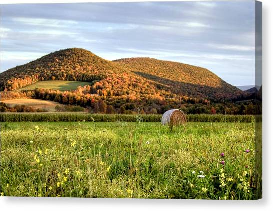 October Wildflowers And Haybale Canvas Print