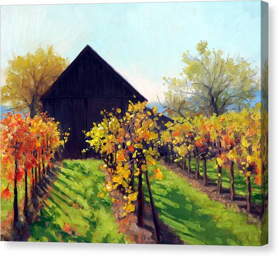 Sonoma Valley Canvas Print - October's Golden Glow by Armand Cabrera