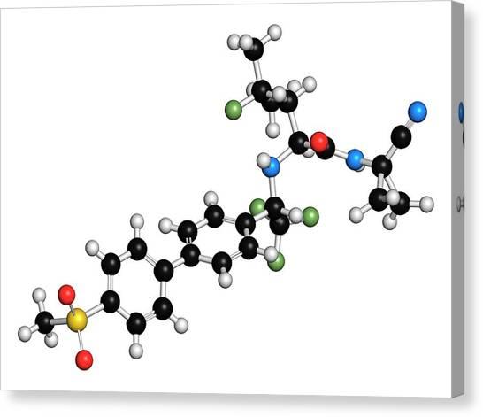 pdf polymer therapeutics