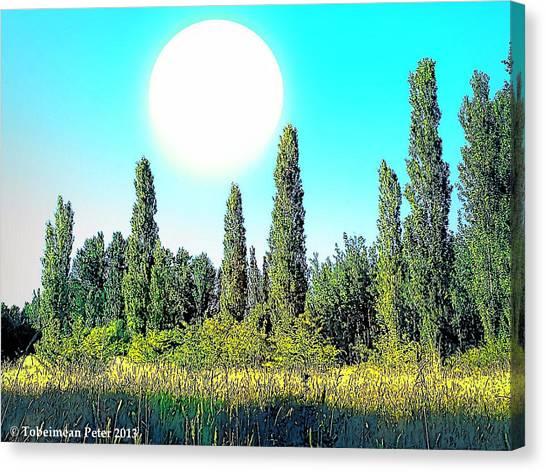 Odd Landscape Canvas Print