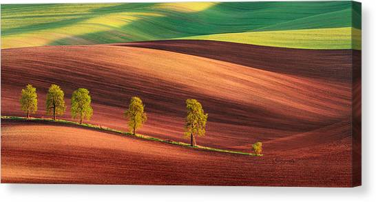 Odyssey Of An Avenue II Canvas Print by Jan ?m?d, Qep