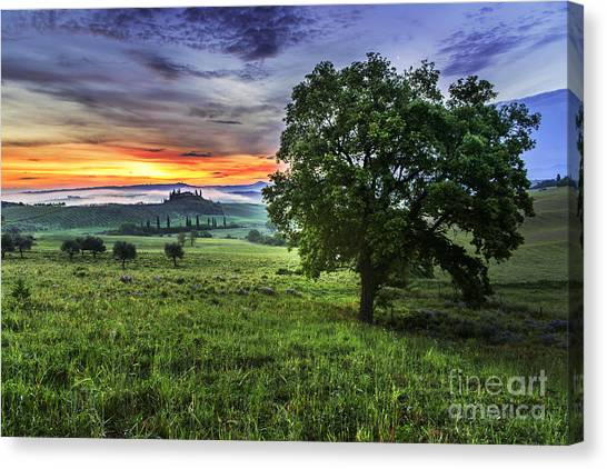 Of Moon And Dawn Canvas Print