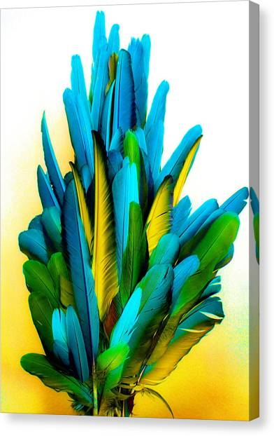 Yellow And Turquoise Canvas Print by Paulette Maffucci