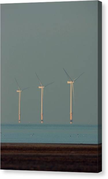 Wind Farms Canvas Print - Offshore Wind Farm by David Woodfall Images/science Photo Library