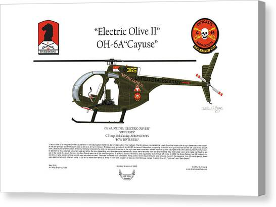 Oh-6a Electric Olive II Loach Canvas Print