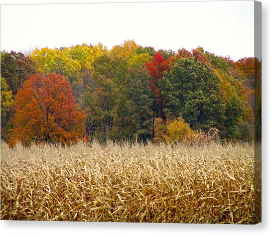 Ohio In November Canvas Print by Andrea Dale