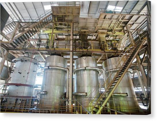 Oil Palm Processing Factory Canvas Print by Scubazoo/science Photo Library