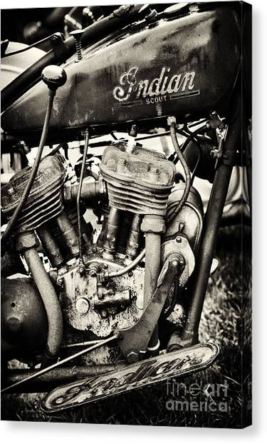 Scouting Canvas Print - Oily Old Indian by Tim Gainey