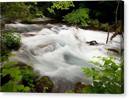 Canvas Print featuring the photograph Oirase Stream by Brad Brizek