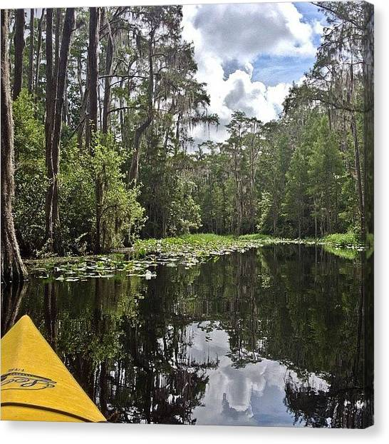 Okefenokee Canvas Print - #okefenokee by Cheryl Marie