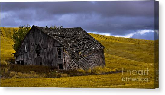 Old Barn Canvas Print by Camille Lyver