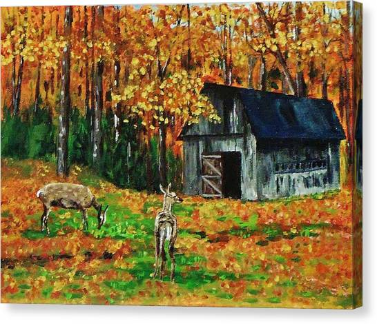 Old Barn In The Woods Canvas Print