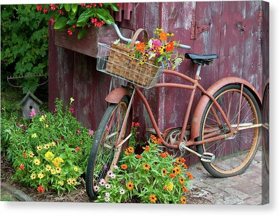 Zinnia Canvas Print - Old Bicycle With Flower Basket Next by Panoramic Images