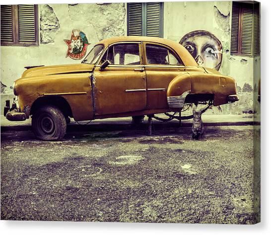 Old Car/cat Canvas Print by Svetlin Yosifov