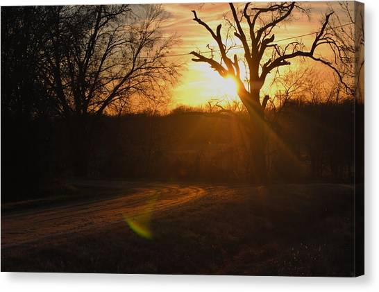 Old Country Road. Canvas Print by Rachel Bazarow