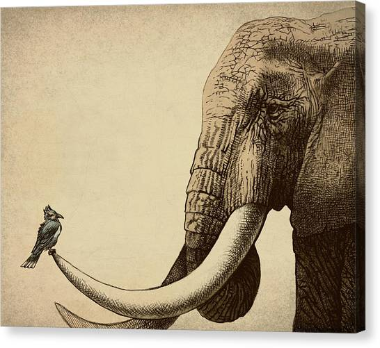 Animal Canvas Print - Old Friend by Eric Fan