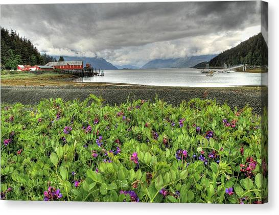 Old Haines Cannery Canvas Print