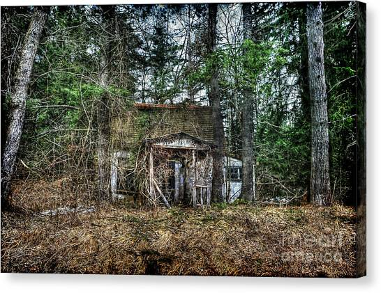 Old House With Overgrown Brush Canvas Print by Dan Friend