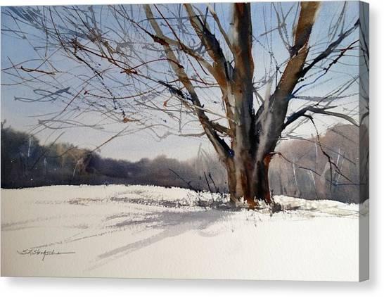 Old Oak White Road Canvas Print