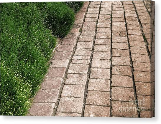 Pavers Canvas Print - Old Pavers Alley by Olivier Le Queinec