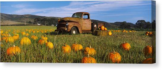 Pumpkin Patch Canvas Print - Old Rusty Truck In Pumpkin Patch, Half by Panoramic Images