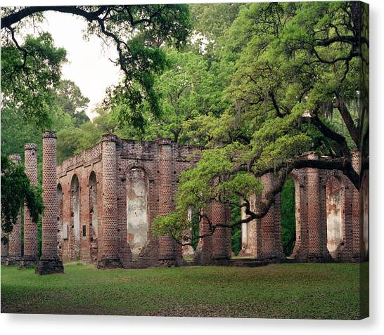 Old Sheldon Church Canvas Print