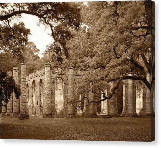 Old Sheldon Church - Sepia Canvas Print