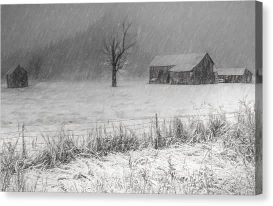 Old Sod Farm Canvas Print