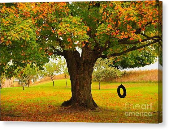 Old Tire Swing Canvas Print