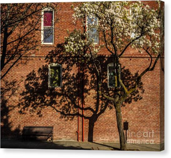 Drain Pipe Canvas Print - Old Town Bricks by Mitch Shindelbower