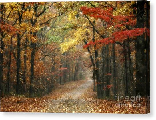 Tn Canvas Print - Old Trace Fall - Along The Natchez Trace In Tennessee by T Lowry Wilson