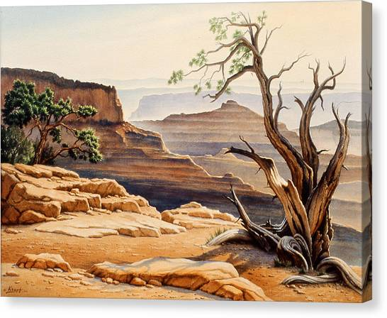 Grand Canyon Canvas Print - Old Tree At The Canyon by Paul Krapf