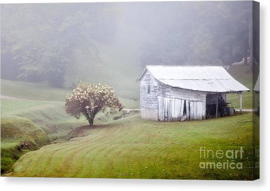 Old Weathered Wooden Barn In Morning Mist Canvas Print