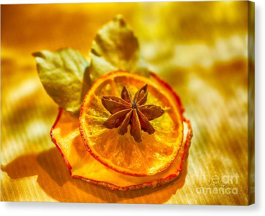 Dried Fruit Canvas Print - Natural Dried Fruit Ornaments by Iris Richardson