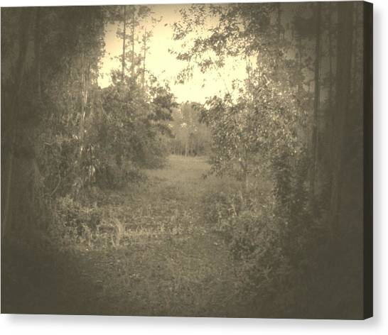 Olden Look Canvas Print by Chasity Johnson