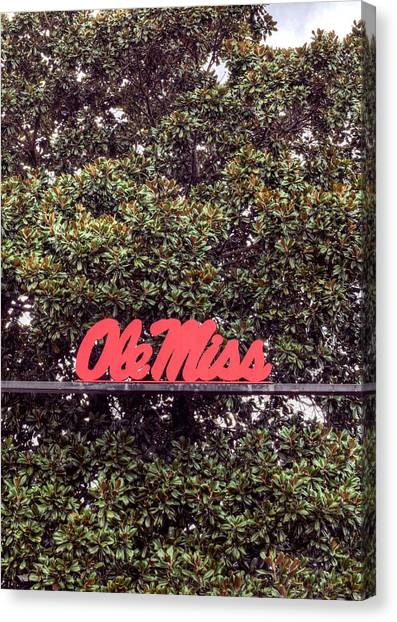 University Of Mississippi Ole Miss Canvas Print - Ole Miss by JC Findley
