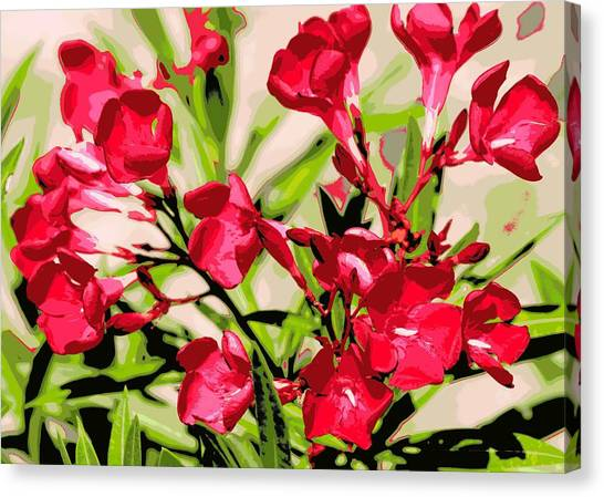 Oleander Red Canvas Print by Sheri McLeroy